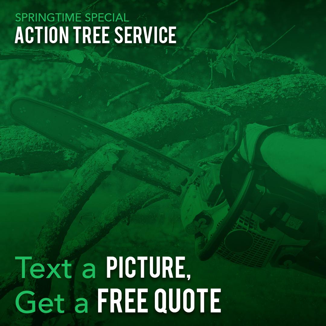 Actiontree Instagram Freequote01 180x1080
