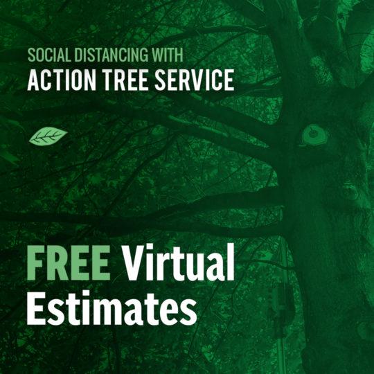 Actiontreeservice Instagram Socialdistancing 1080x1080